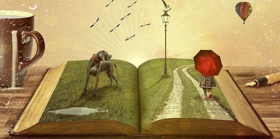 Livros sobre sustentabilidade