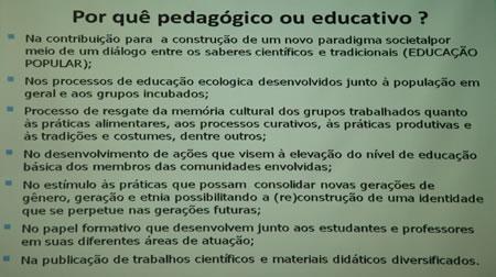 pedagogico