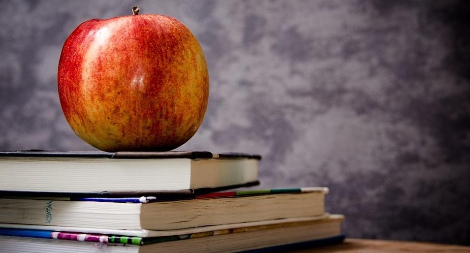 Saúde e educação.